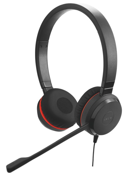 Jabra Evolve 20, Duo, USB, leather
