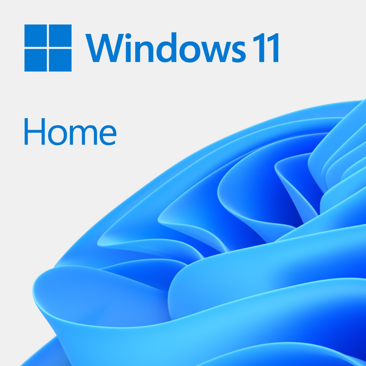 MS Win 11 Home 64-Bit Slovak 1pk OEM DVD