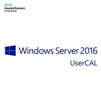 HPE MS WS19 1 USR CAL licence