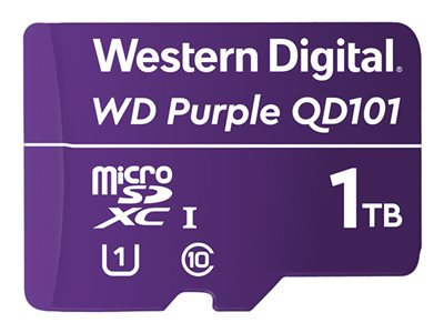 WD Purple WDD100T1P0C